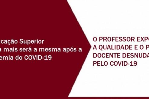 O PROFESSOR EXPOSTO: A QUALIDADE E O PERFIL DOCENTE DESNUDADOS PELO COVID-19